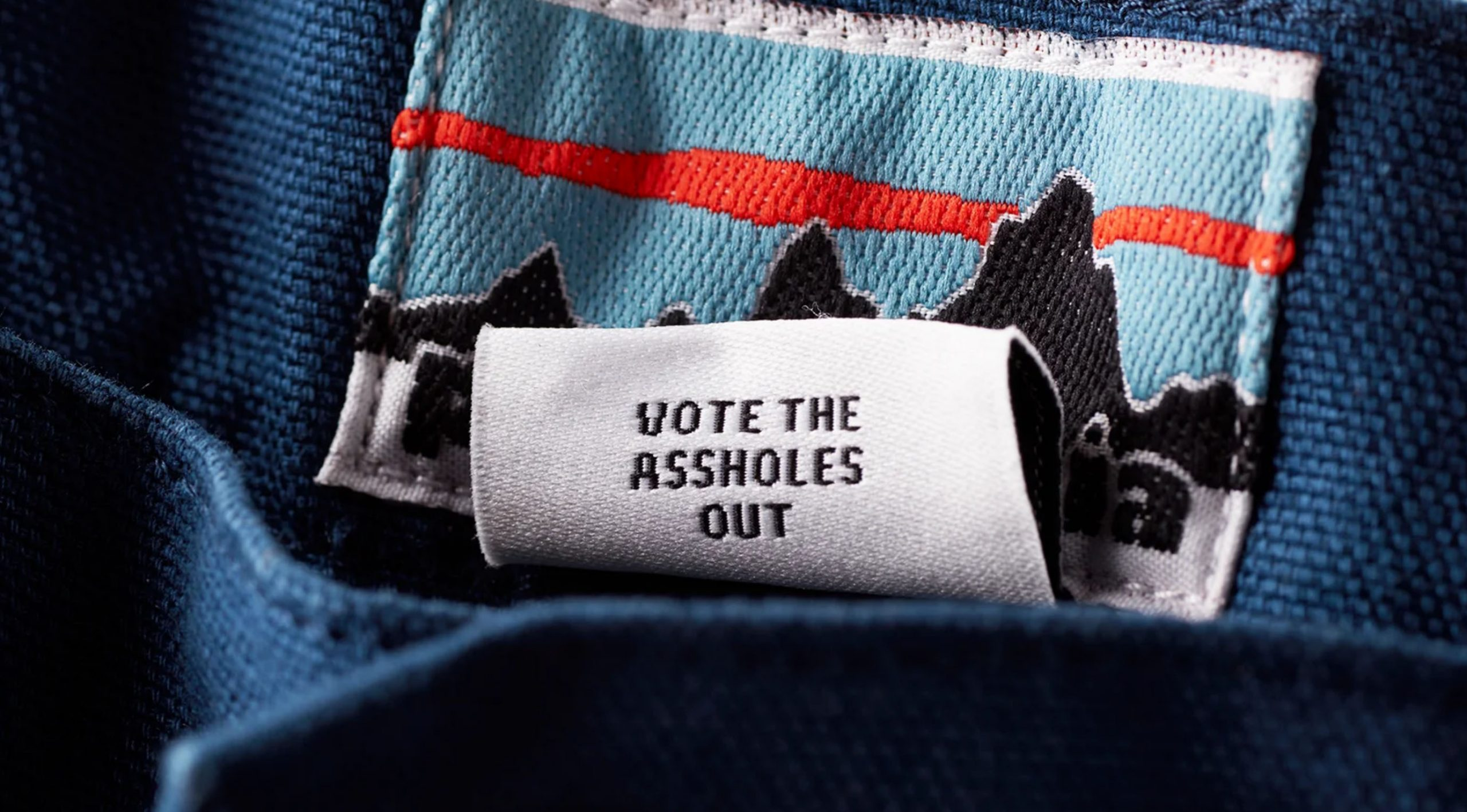 Patagonia's 'Vote the Assholes Out' Tags
